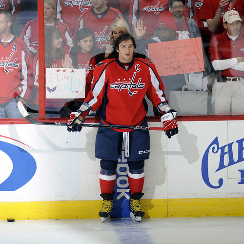 HD Alexander Ovechkin Washington Capitals Captain Wallpaper 500x500