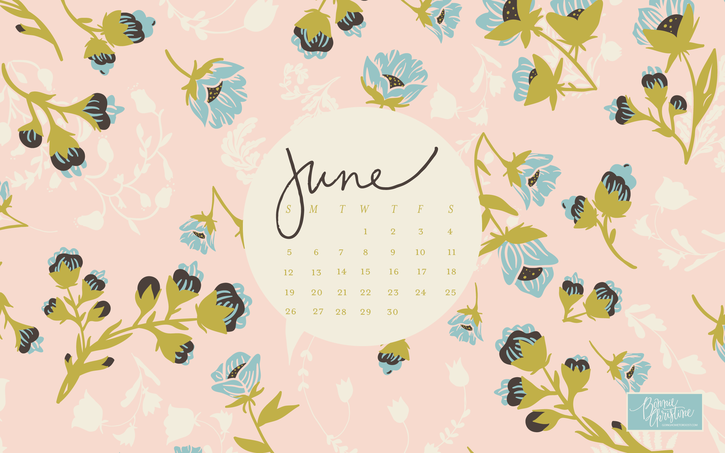 June 2016 Desktop and Smartphone Backgrounds going home to roost 2400x1500
