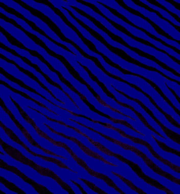 BLUE ZEBRA Graphics Code BLUE ZEBRA Comments Pictures 705x763