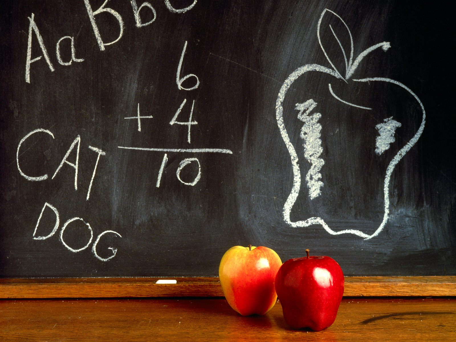 HD Back to School Wallpapers and Back to School Backgrounds 1600x1200