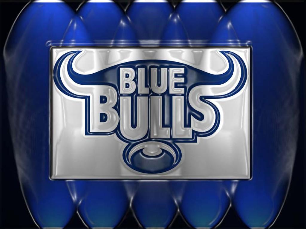 Gallery For gt Blue Bulls Wallpaper 1024x768