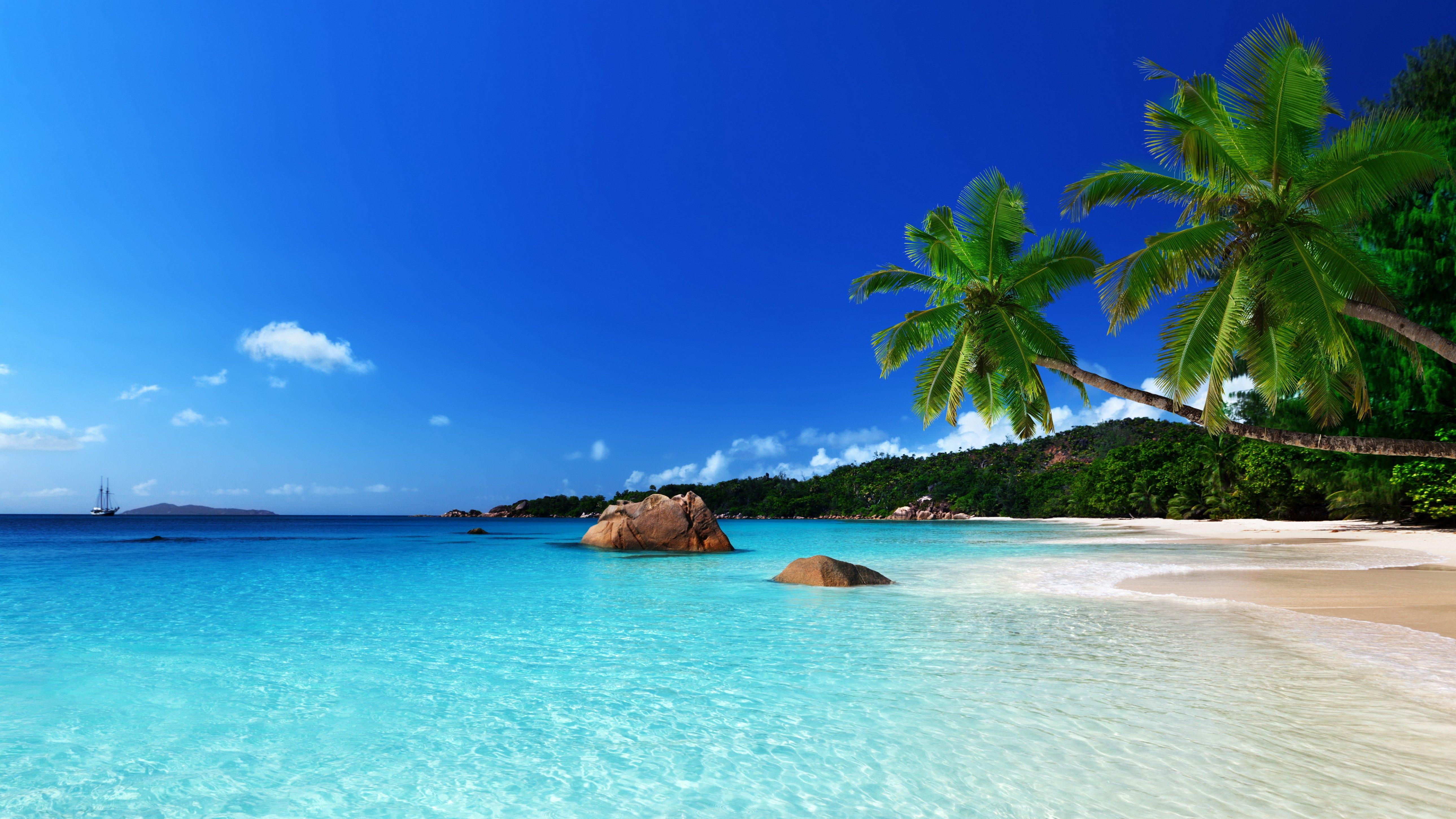 tropical paradise beach ocean sea palm summer coast wallpaper 5156x2900