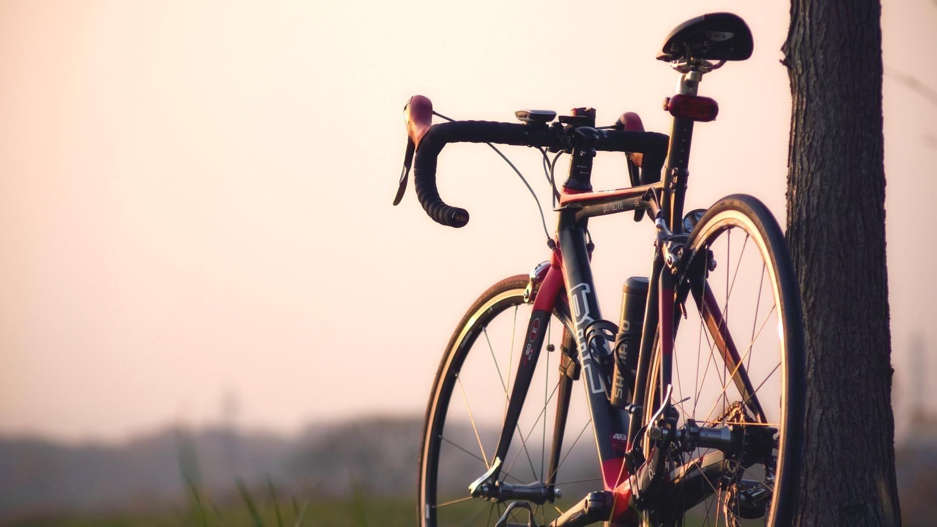 Bike  № 1580568 бесплатно