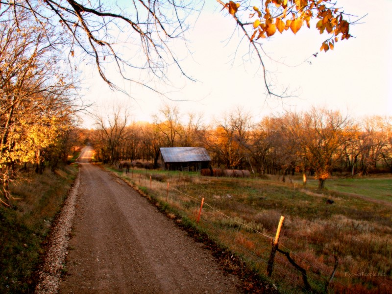 Country road in the fall Wallpaper Wallpapers Desktop 800x600