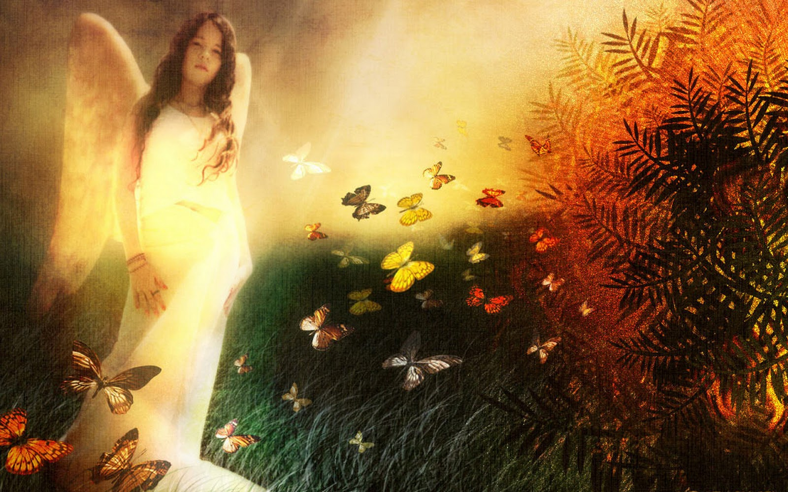 Fantasy Angel Photoshop Designs HD wallpapers 1920x1200 download 1600x1000