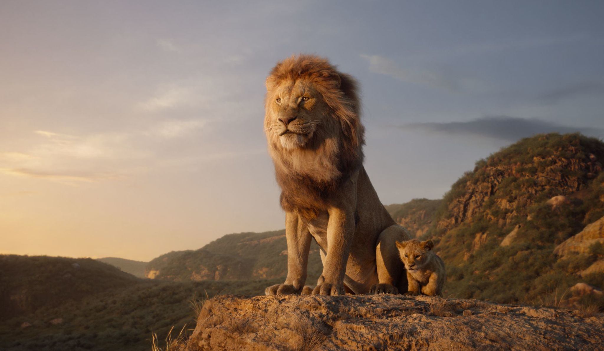 The Lion King 2019   Photo Gallery   IMDb 2048x1193
