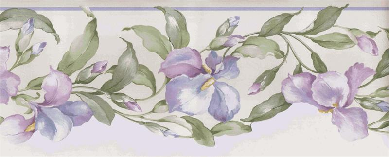 diecut bottom out of stock price 12 99 at wallpaper borders visit 800x323