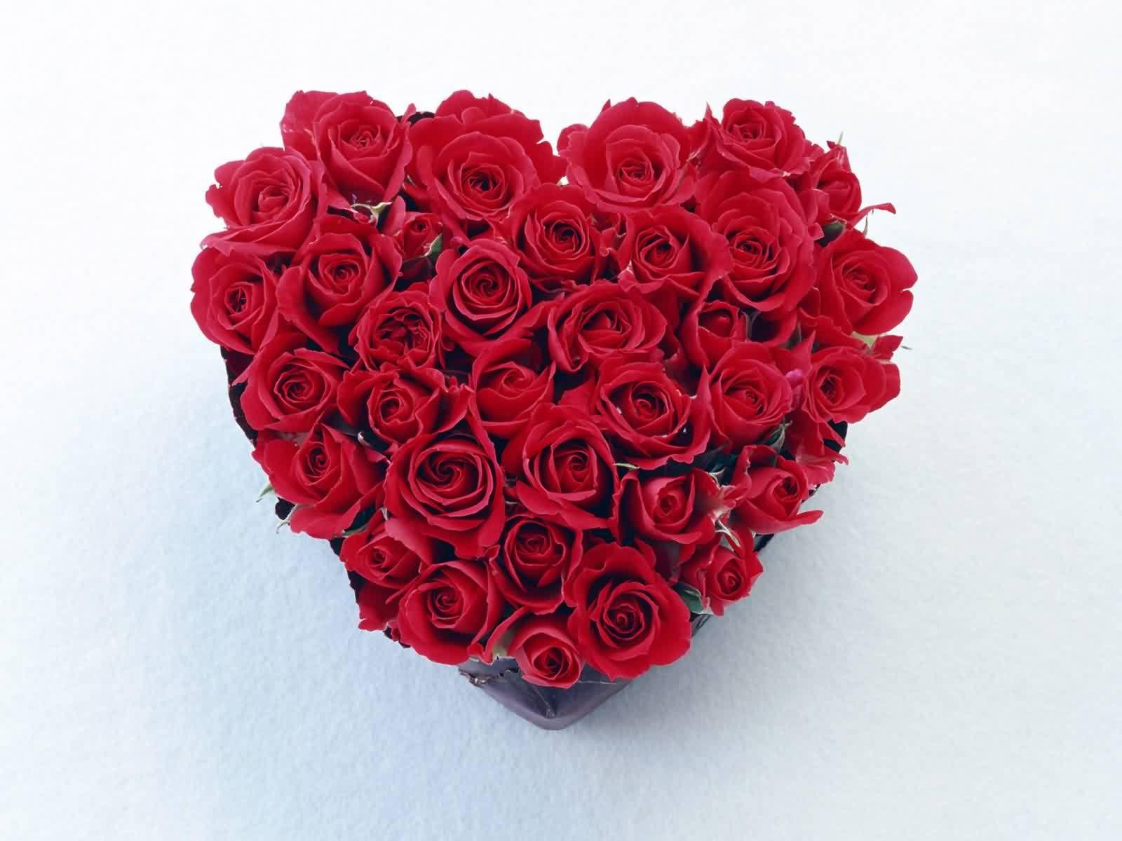 Wallpaper of roses and hearts wallpapersafari - Cannon bullock wallpaper ...