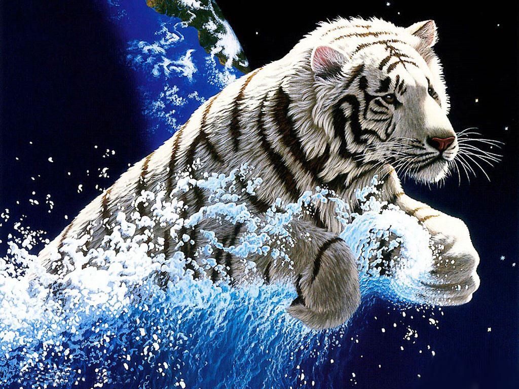 Tiger2 Wonderful white tiger wallpaper hd 1024x768