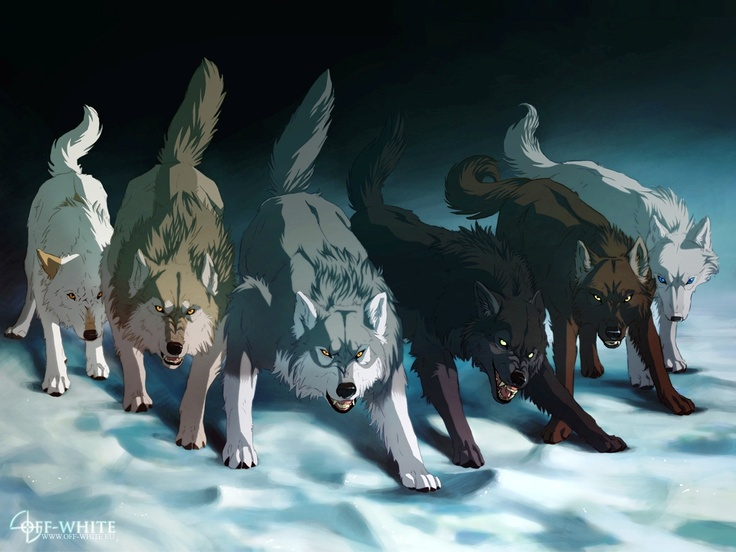 92 Anime Wolves Wallpapers On Wallpapersafari