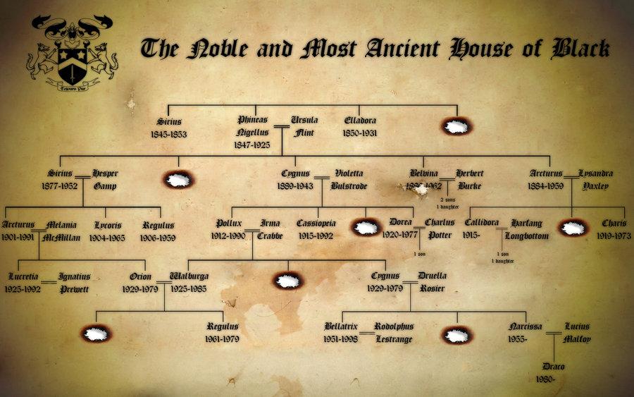 49 Genealogy Wallpaper On Wallpapersafari
