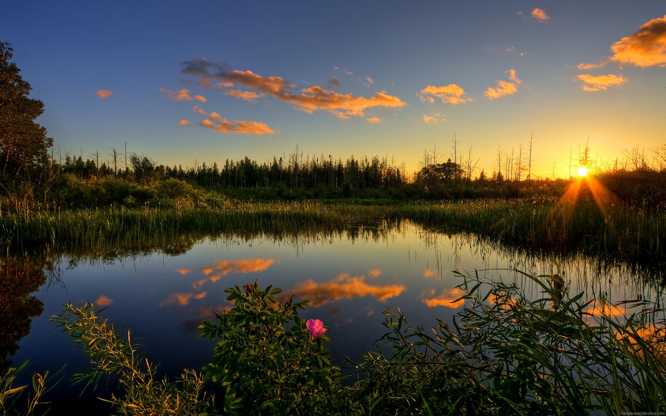 озеро в лесу на закате  № 380272 загрузить