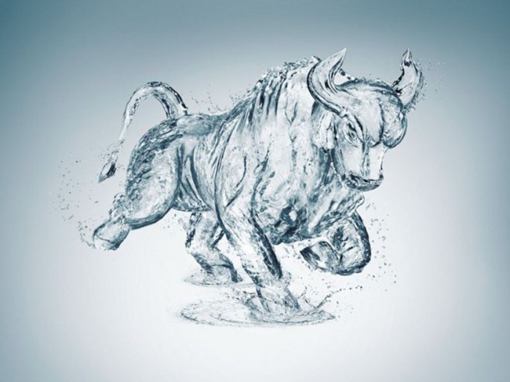 Pics For gt Blue Bulls Wallpaper Hd 1024x768