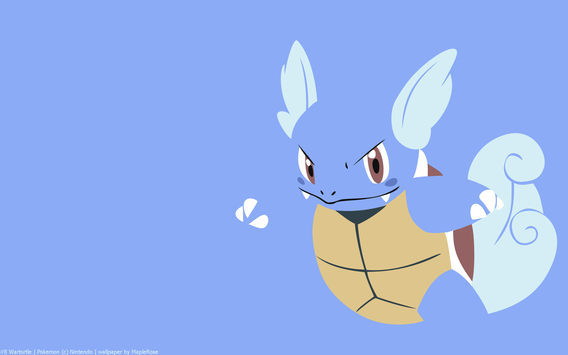 Wartortle Pokemon HD Wallpaper   HD wallpapers 1920x1200