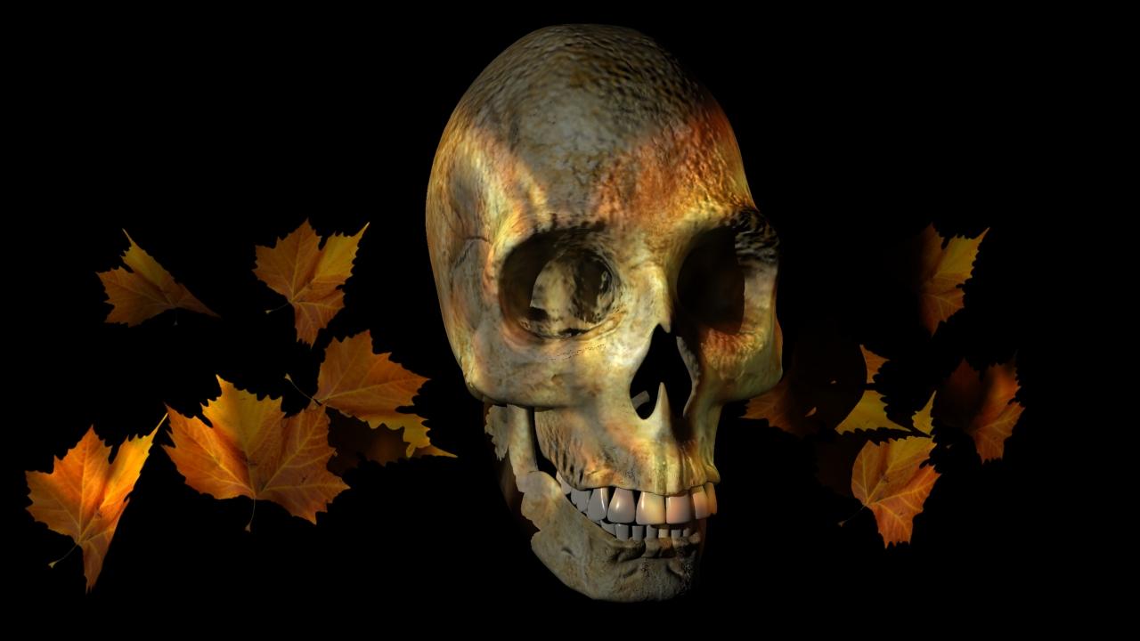 skulls fire black background skull desktop 1600x1200 wallpaper 1280x720
