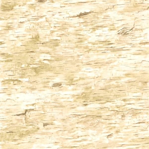 Real Birch Bark Wallpaper Wallpapersafari
