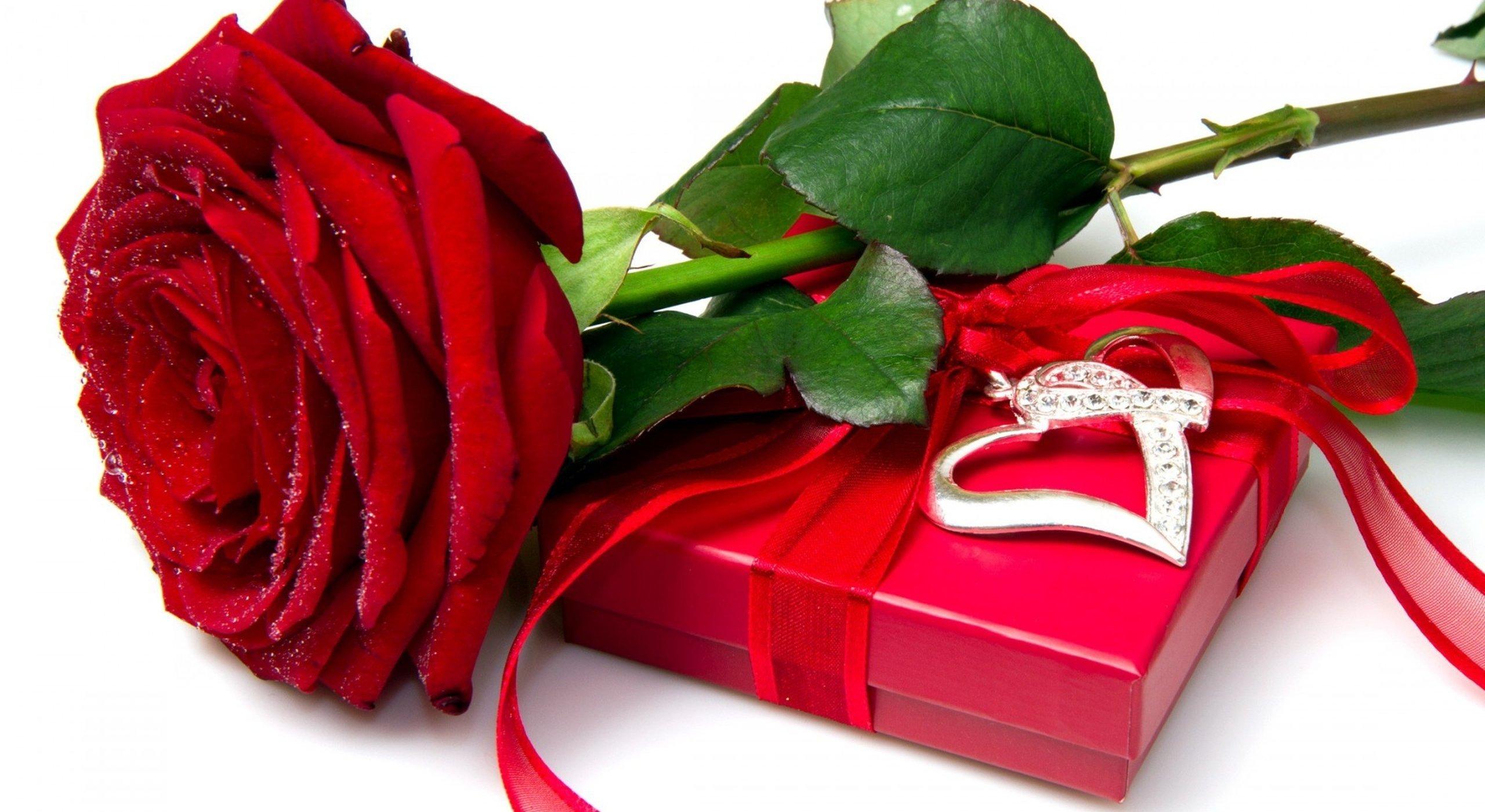 Розы для тебя подарок самые красивые цветы 172