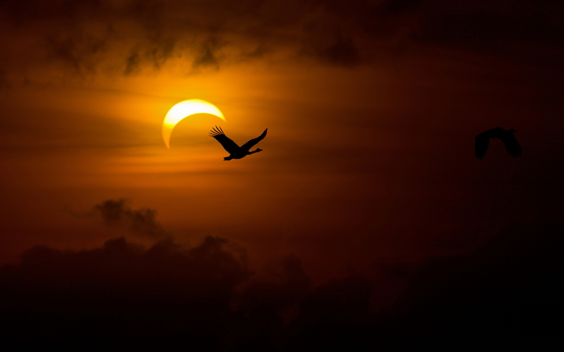 High Res Solar Eclipse Wallpapers #891000 Picture