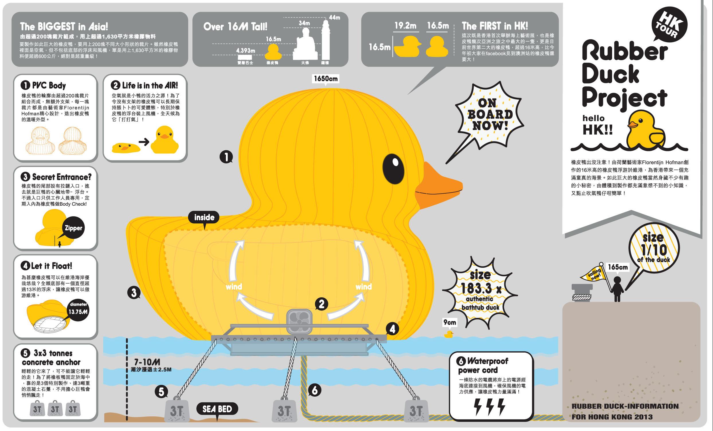Giant Rubber Duck Wallpaper Big yellow ducks arrival 2487x1505