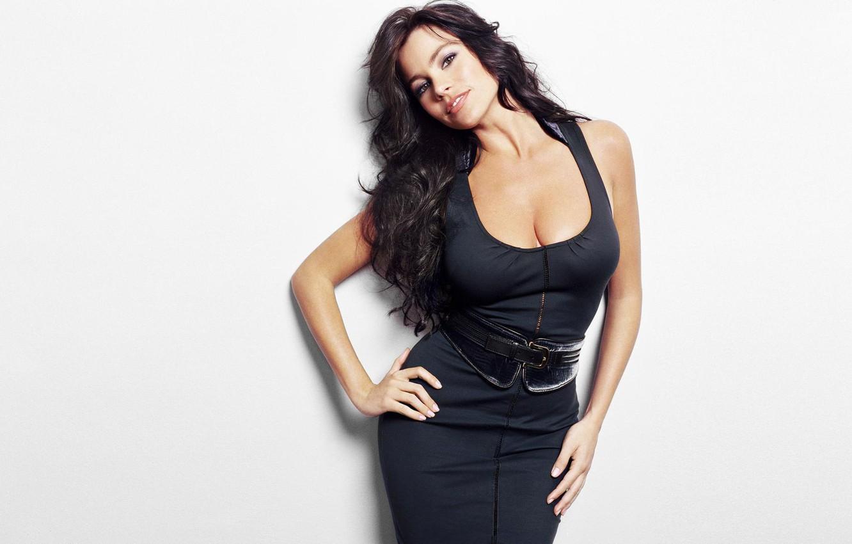 Wallpaper Sexy Actress Dress Latin Sofia Vergara images for 1332x850