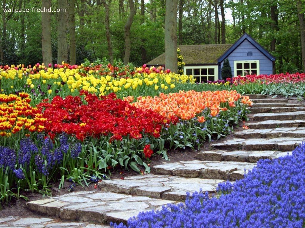 Flower Garden Wallpaper flower gardens wallpaper - wallpapersafari