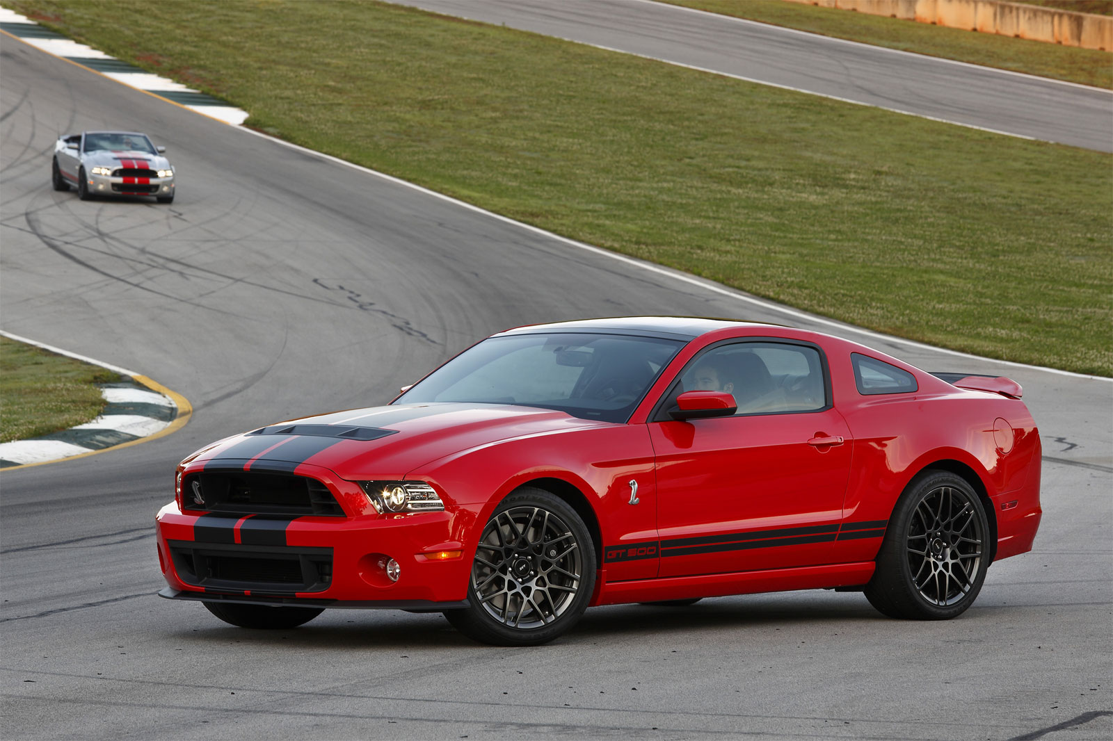 Sport Cars Ford Shelby GT500 Hd Wallpapers 2013 1600x1066