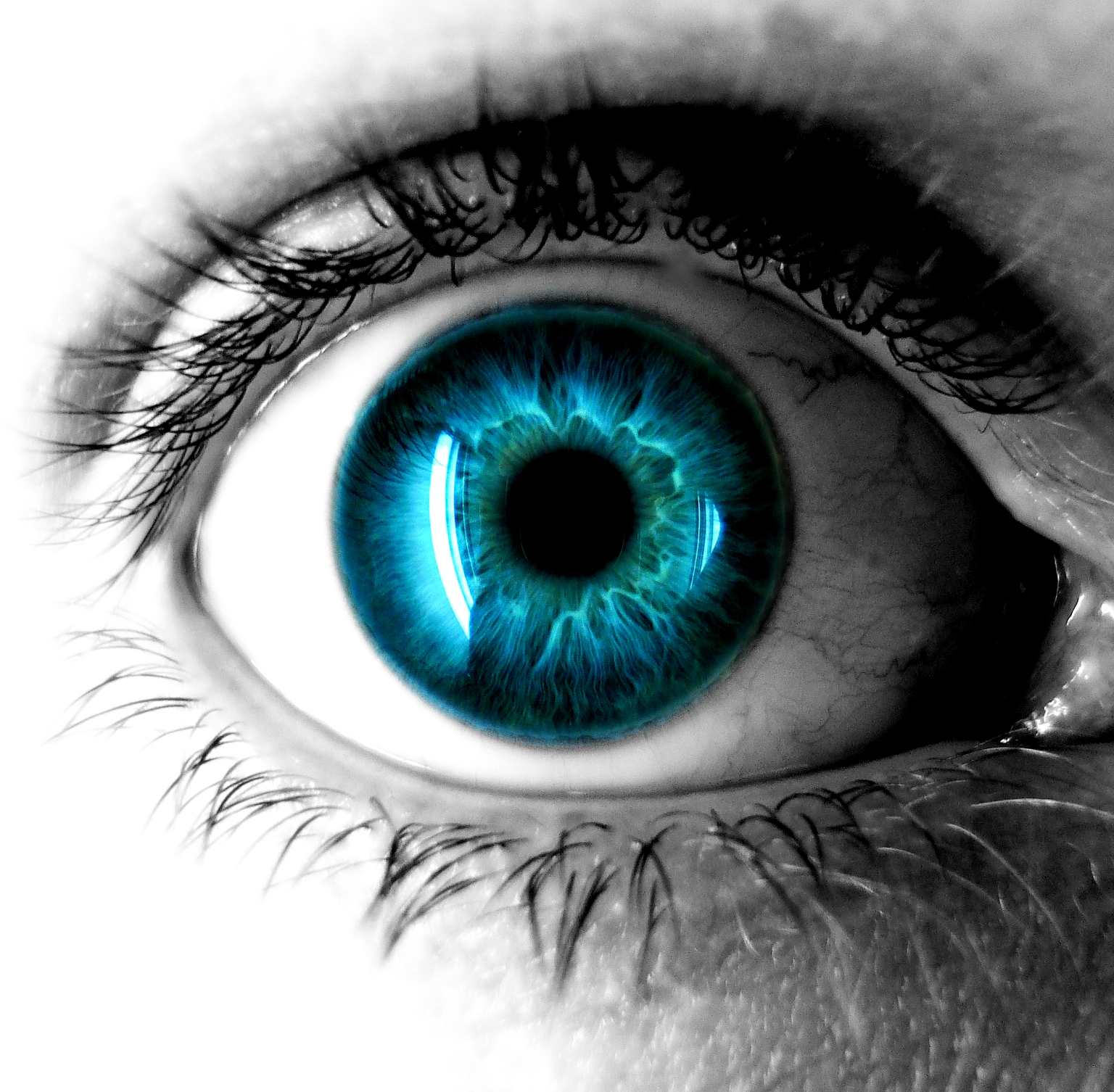Magic Eye HD Wa Live wallpaper eyeball screenshots 1536x1506