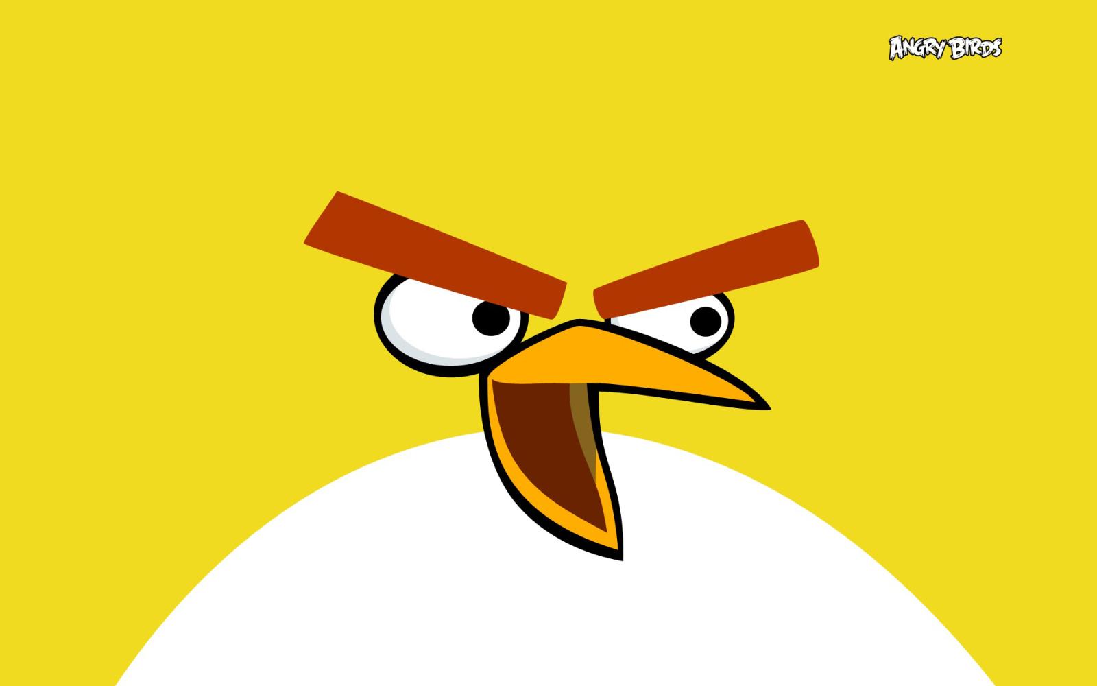 Yellow Angry Birds Wallpaper Cartoon Wallpapers 1600x1000