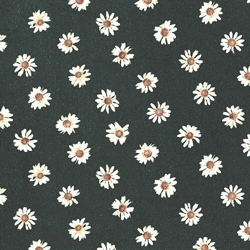 daisy flowers iphone wallpaper Tumblr 500x500
