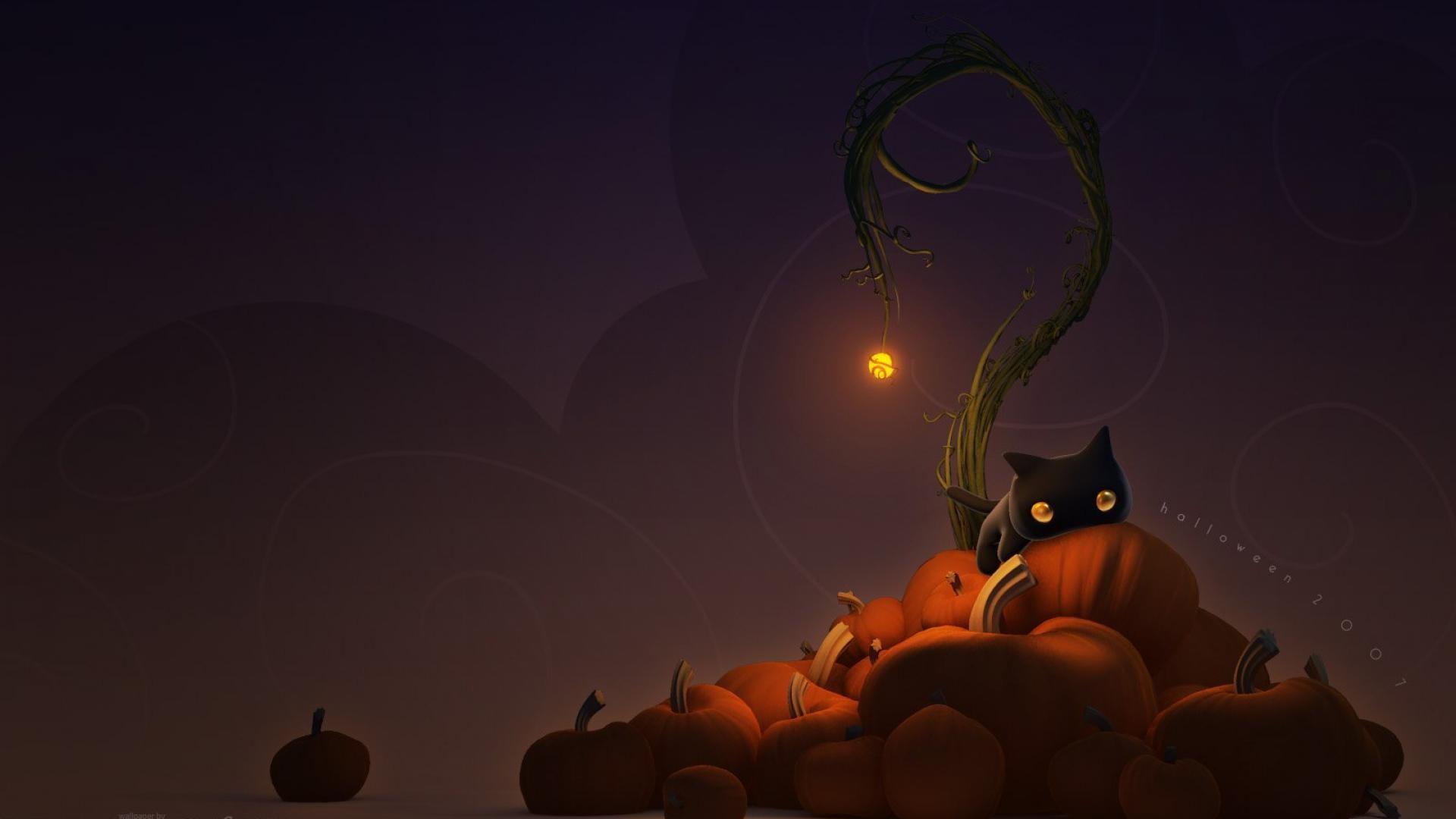 Black Cat Halloween Wallpaper 51 images 1920x1080