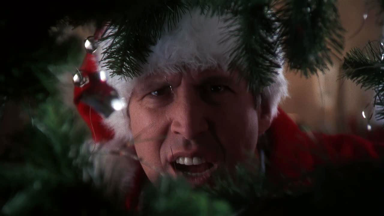 National Lampoon's Christmas Vacation - Chevy Chase Fanclub Image ...