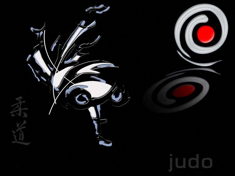 Judo wallpaper 800x600 Wallpapers 800x600 Wallpapers Pictures 800x600