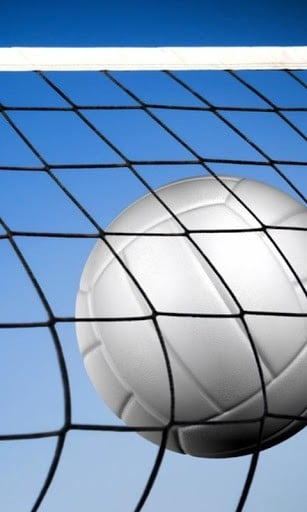 volleyball sport wallpapers and theme application volleyball is a team 307x512