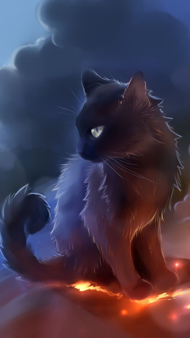 Black Cat Anime Wallpaper   iPhone Wallpapers 640x1136