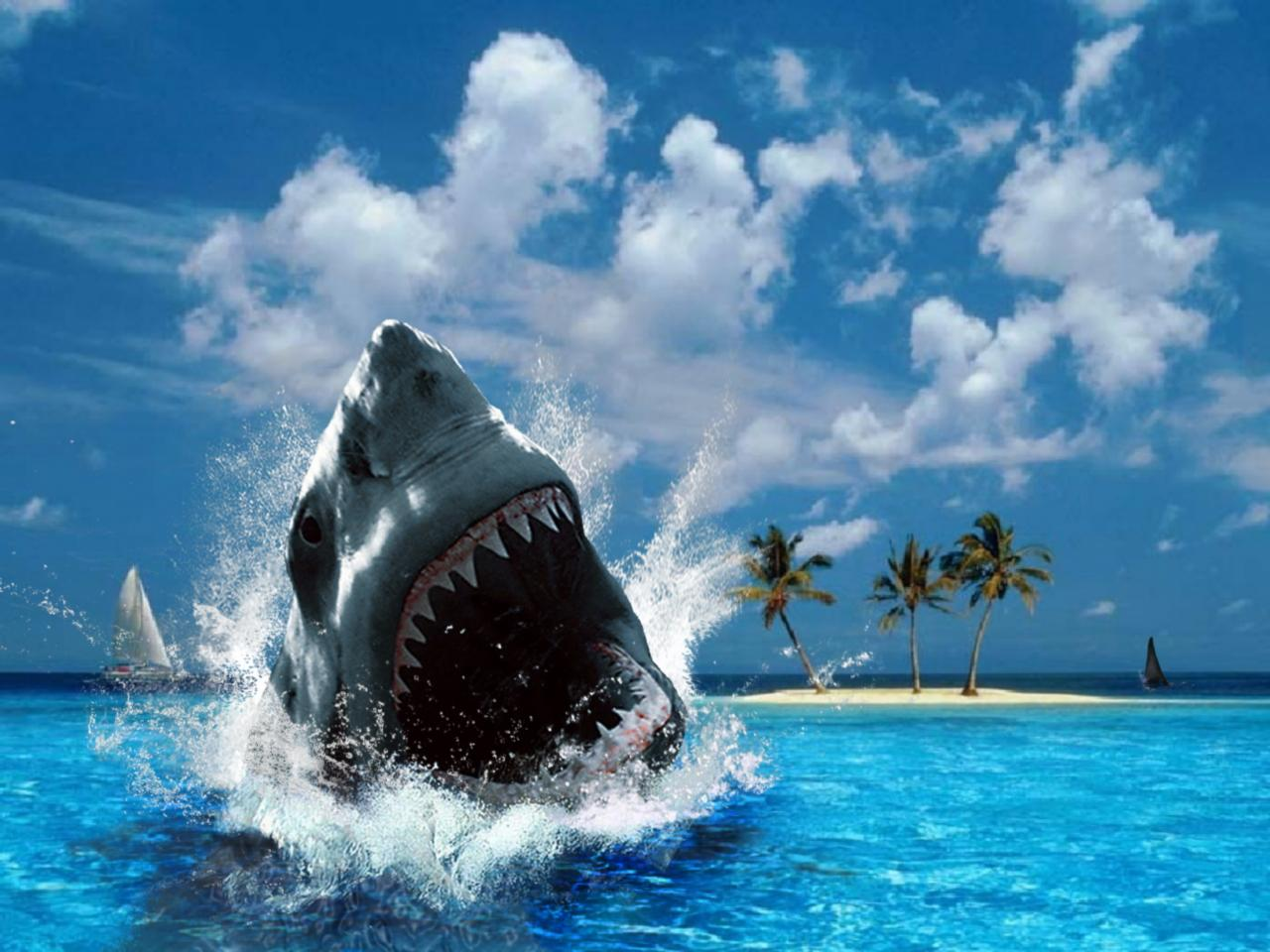 Shark Wallpapers with sea backgrounds suitable for adventure's desktop