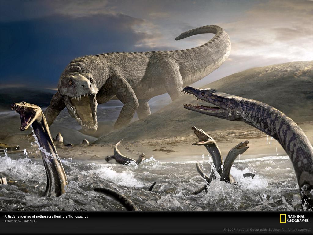Dinosaur Wallpaper Download Photos    National Geographic 1024x768
