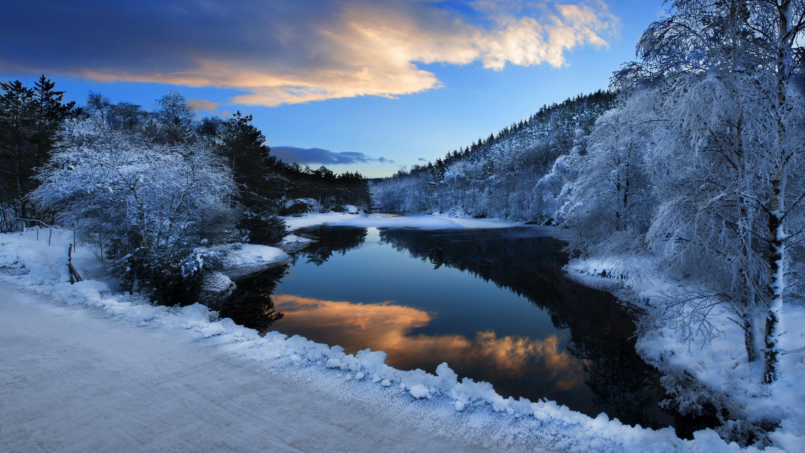 Snow River Winter Landscape 2560x1440