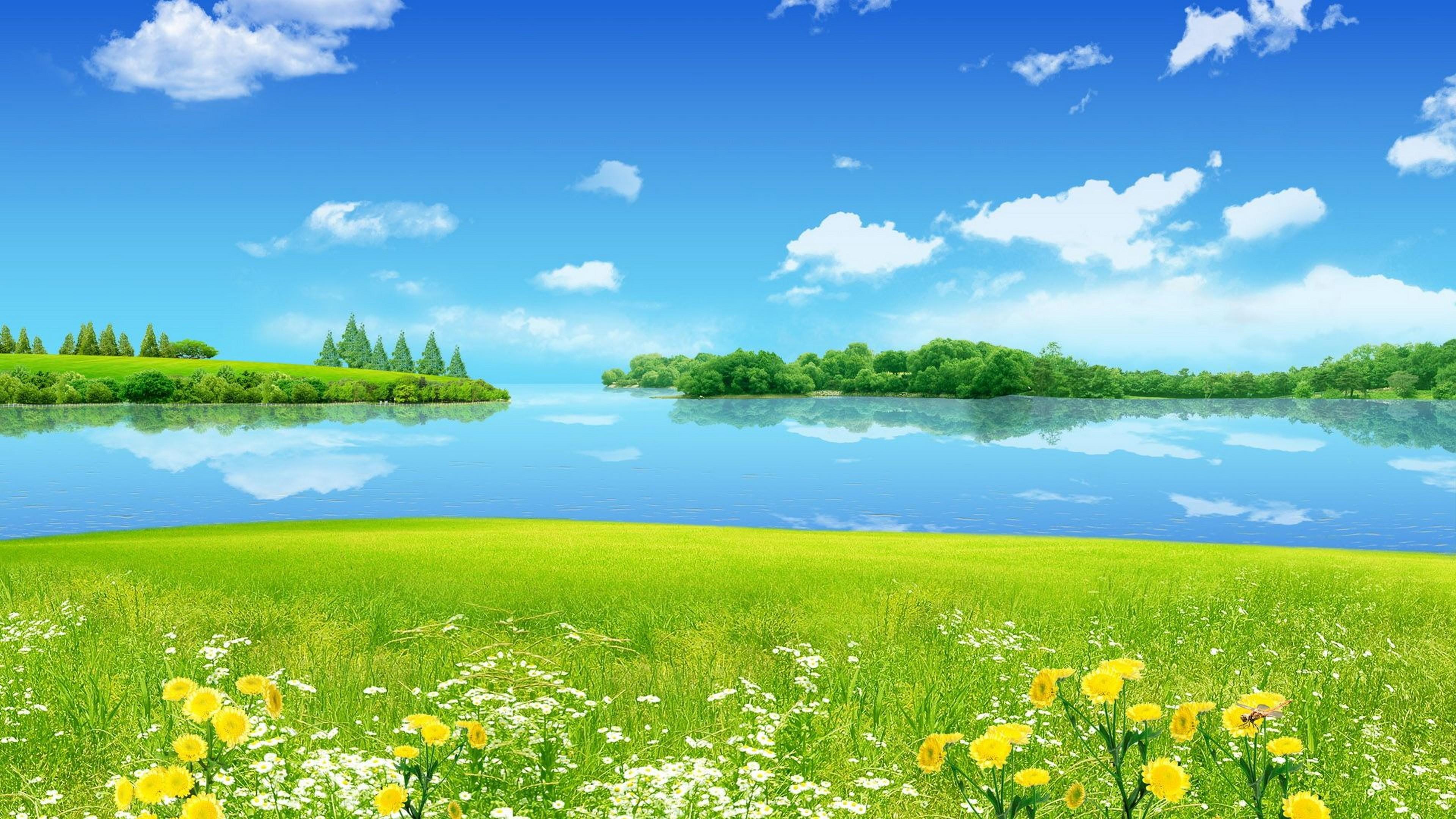 Summer Landscape Meadow With Green Grass Wild Flowers Blue Sky 3840x2160