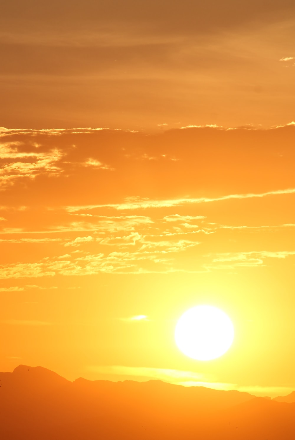 Best 100 Sun Images [HD] Download Pictures on Unsplash 1000x1491