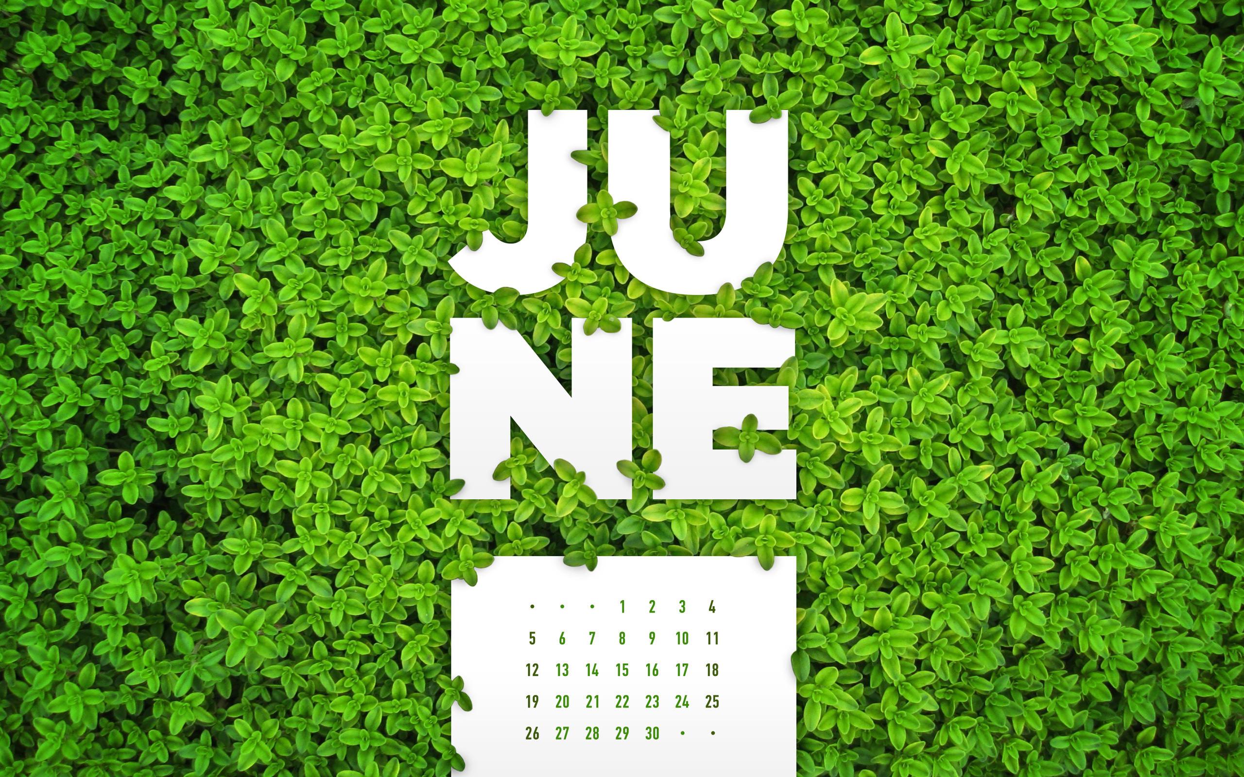 June 2016 Desktop Calendar Wallpaper Paper Leaf 2560x1600