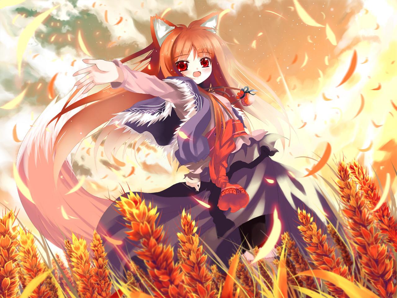 Spice and wolf hd wallpaper wallpapersafari - Anime wolf wallpaper ...