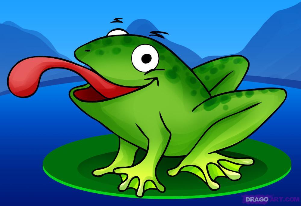 draw frogs how to draw a frog draw cartoons draw cartoon animals 1000x685