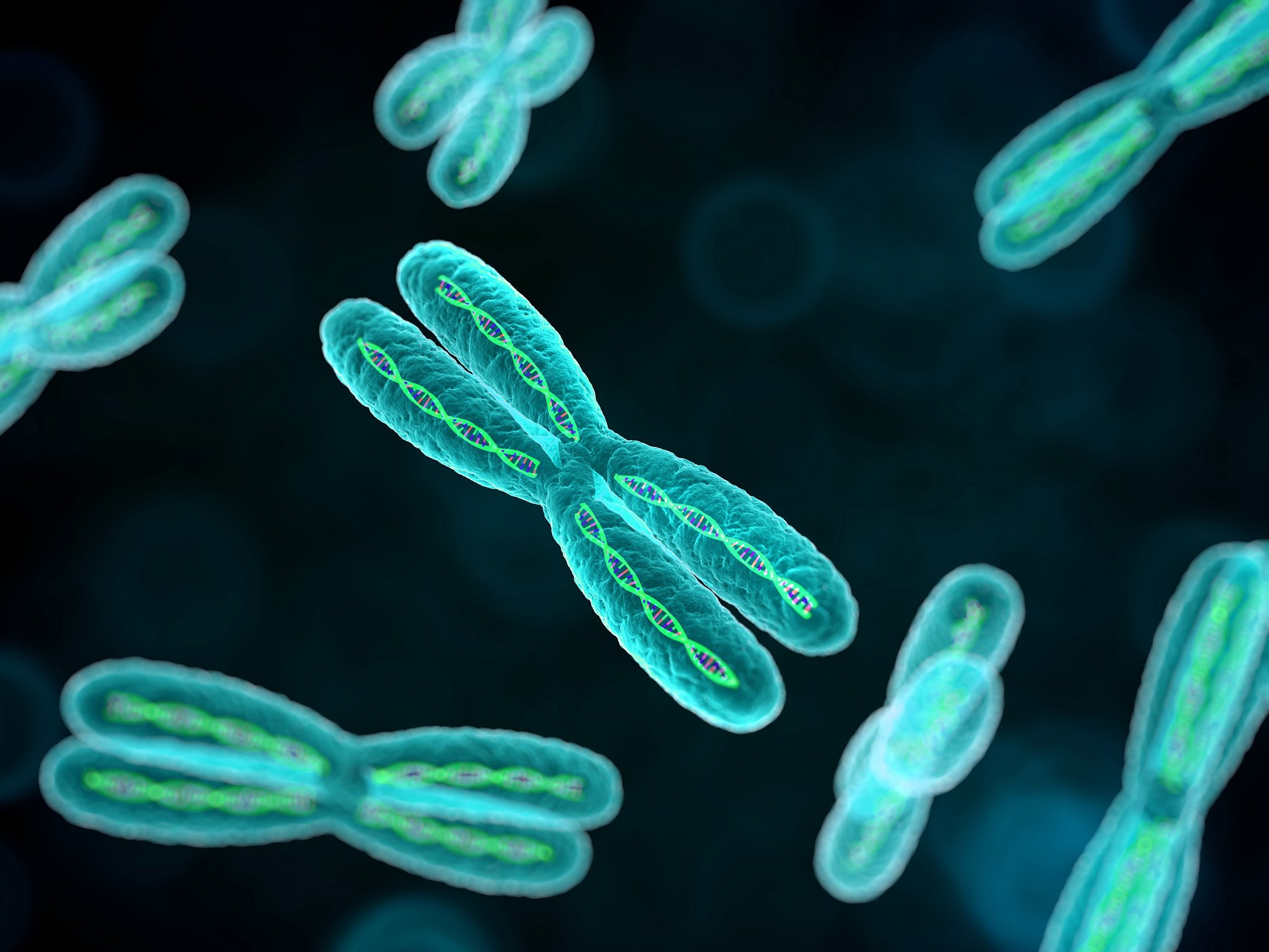Chromosome dna pattern genetic 3 d psychedelic wallpaper 2048x1536 2048x1536