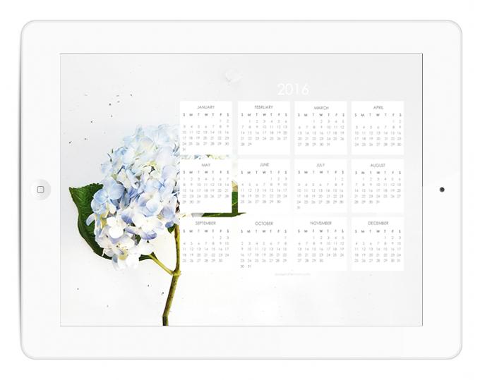 Happy 2016 2016 Calendar Blue Hydrangea Desktop Wallpaper 680x539