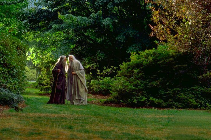 There was once a time where Saruman walked in my woods lotr 900x595