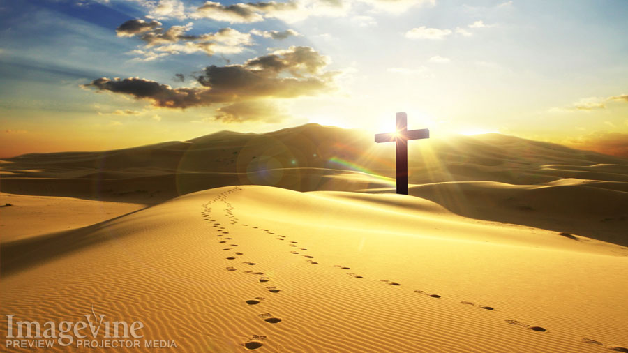 Related Pictures footprints in the sand hd wallpaper picture 900x506