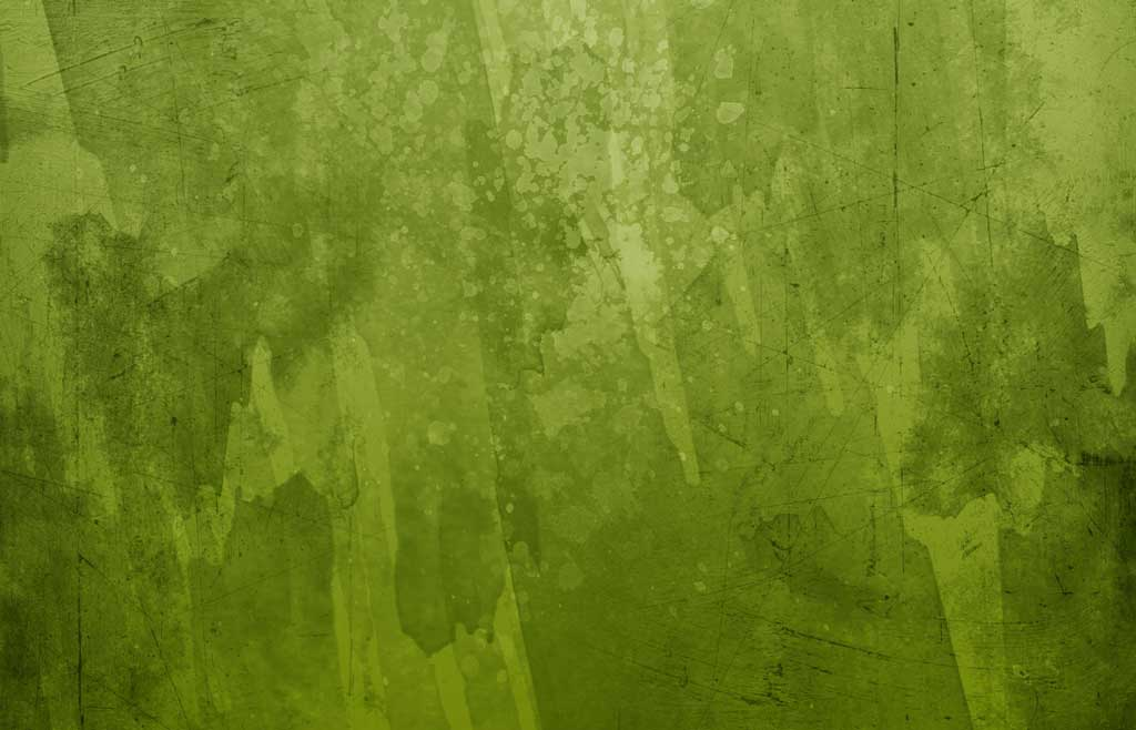 Forest Green Backgrounds 1024x658
