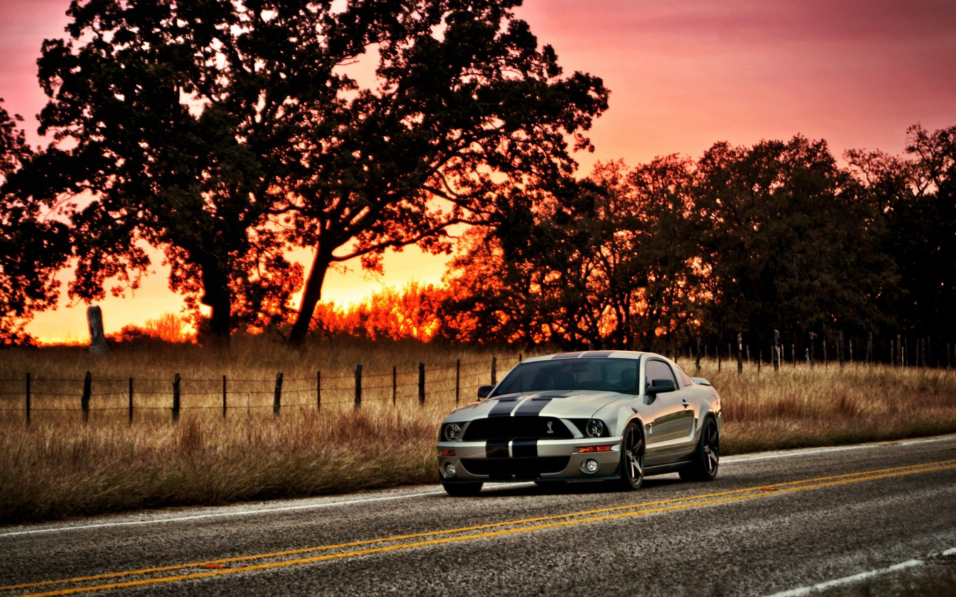 The Name Shelby Wallpaper  WallpaperSafari