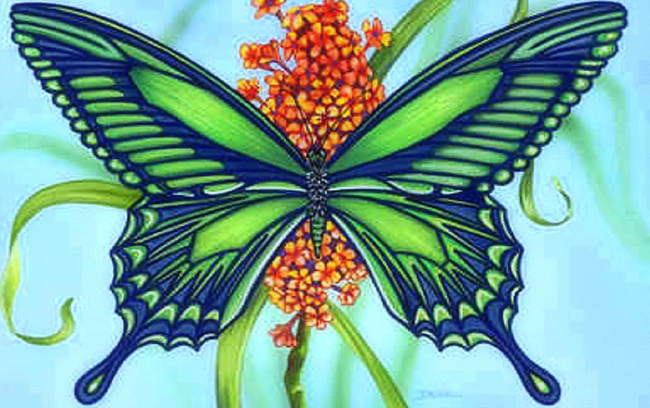 Flower wallpapers Green Blue Butterfly Flower stock photos 1280x804