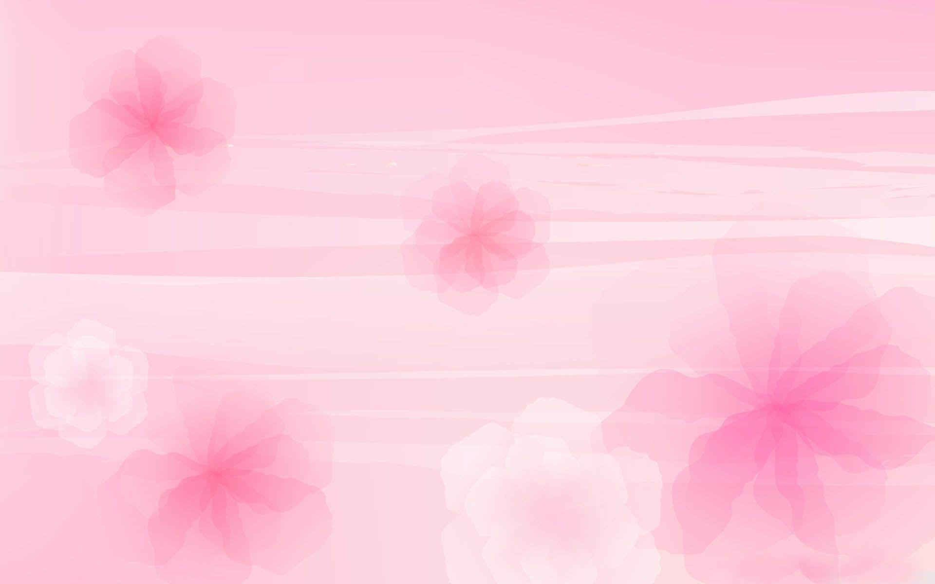 Light Pink Flower Wallpapers 1920x1200